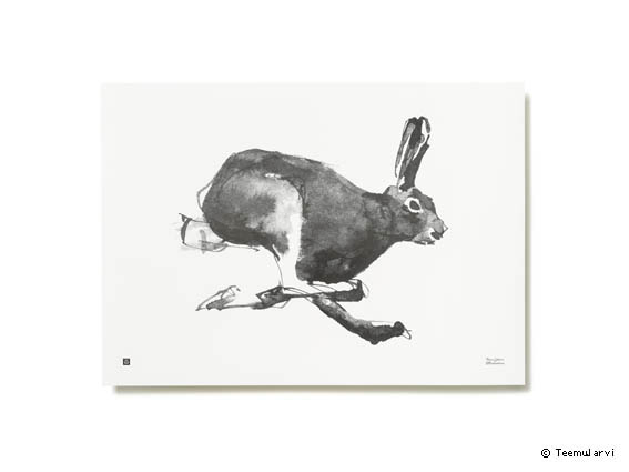 poster-teemujarviillustrations_forestgreetingsposter_hare_photountorautiohr-teamjarvi-creativemapping-maisonobjet-copy